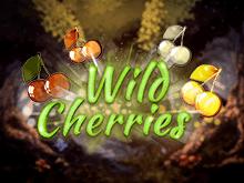 Бонусы в игровом автомате Wild Cherries онлайн
